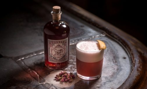 Pernod Ricard Becomes Exclusive Owner of Ultra-Premium Gin Monkey 47