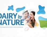 Synergy Flavours Launches 'Dairy by Nature' Range in Europe and Asia