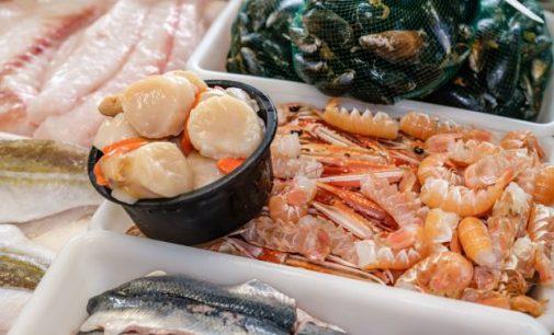 Scottish Seafood Sector Urges Big Retailers to Unlock UK Markets
