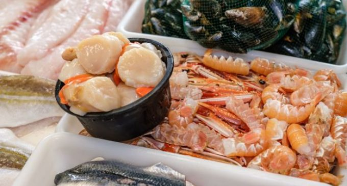 Scottish Seafood Sector Urges Big Retailers to Unlock UK Markets