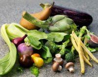 Pasteurisation Kills Bacteria and Guarantees High Food Safety