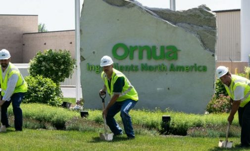 Ornua to Invest $10 Million to Expand US Cheese Ingredients Facility