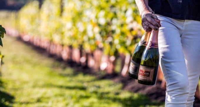 Global English Wine Sales Double