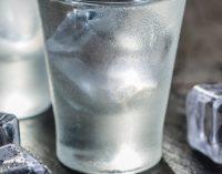 Halewood Opens New Vodka Distillery in Russia