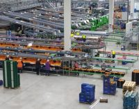 Natural Fruit Company Creates Europe's Leading Lemon Exporter