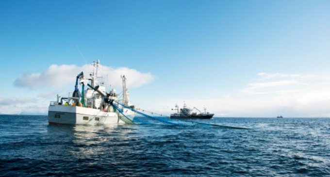 Stable Norwegian Seafood Exports in 2020 Despite the Corona Pandemic